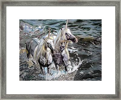 Freedom And Friendship Framed Print