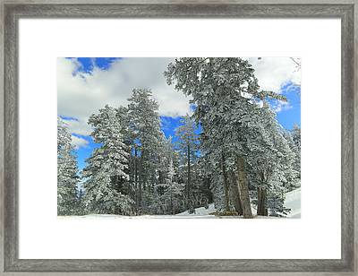 Fresh Fallen Framed Print by Jeff Swan