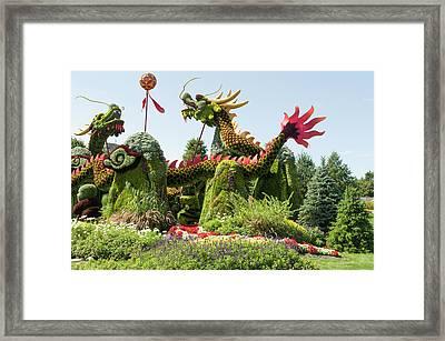 From Beijing Is  Blessing Of The Good Omen Dragons 6 Framed Print