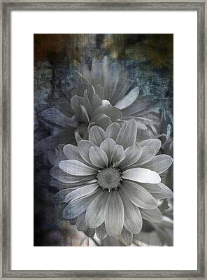 From The Palest Of Light Framed Print