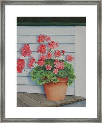 Front Porch Geraniums Framed Print