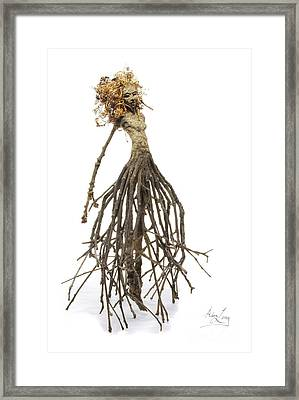 Frou Frou's Dance Framed Print by Adam Long