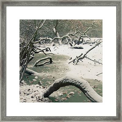 Frozen Fallen Sq Framed Print