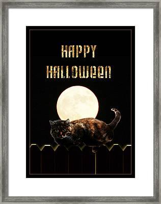 Full Moon Cat Framed Print