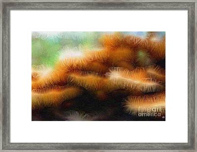 Fungus Tendrils Framed Print by Ron Bissett