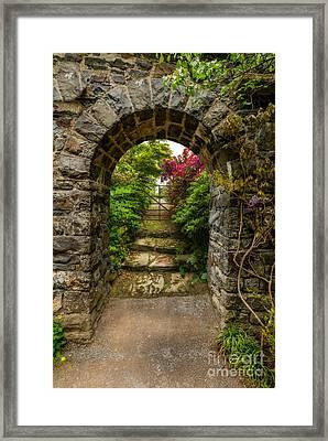 Garden Arch Framed Print by Adrian Evans
