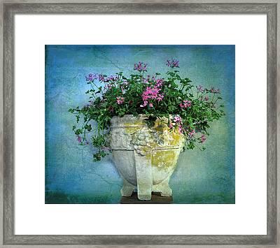 Garden Planter Framed Print by Jessica Jenney
