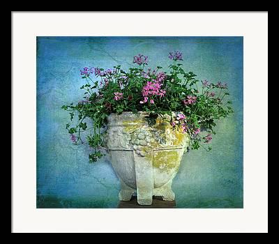 Stone Flower Planter Framed Prints