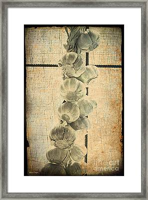 Garlic Framed Print