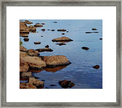 Gathering Wisdom Framed Print