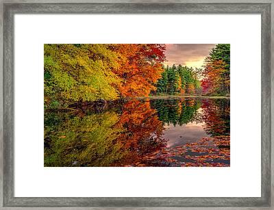 Gemini Fall Framed Print