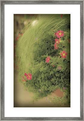 Gems In The Grass Framed Print