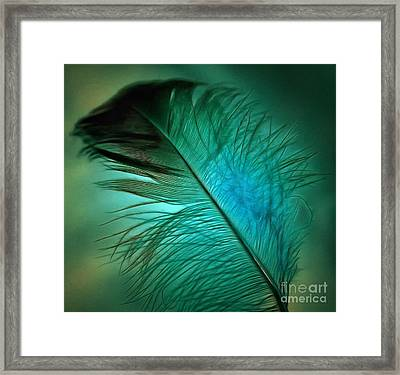 Gentle Touch Framed Print by Krissy Katsimbras