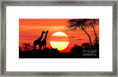 Giraffes At Sunset Framed Print