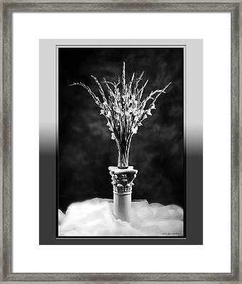 Framed Print featuring the photograph Gladiolas by Linda Olsen