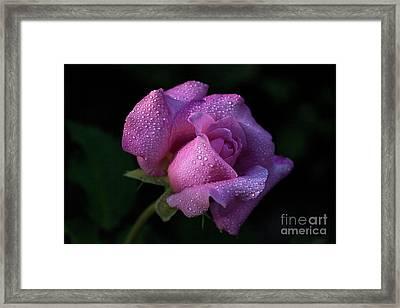 Gleaming Framed Print