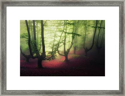 Gloomy Forest Framed Print by Mikel Martinez de Osaba