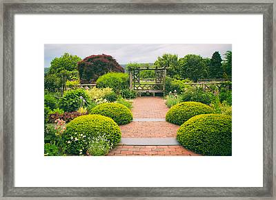 Glorious Garden Framed Print by Jessica Jenney