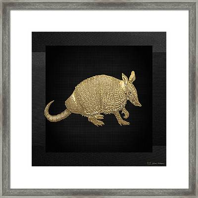 Gold Armadillo On Black Canvas Framed Print by Serge Averbukh