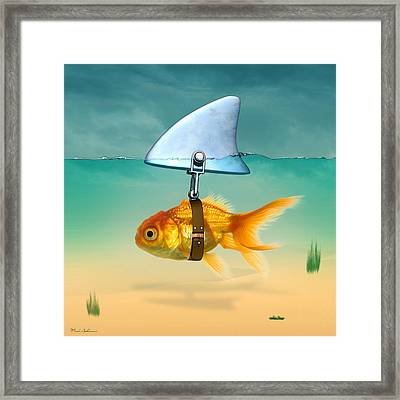 Gold Fish  Framed Print by Mark Ashkenazi