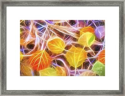 Golden Autumn Framed Print by Veikko Suikkanen