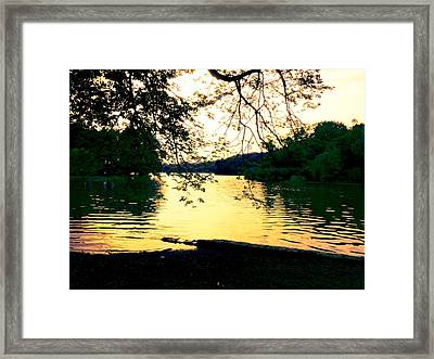 Golden Days Framed Print