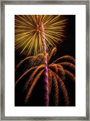 Golden Fireworks Framed Print