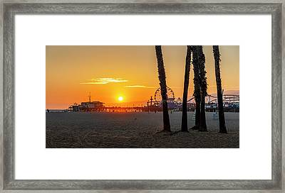 Golden Glow At Sunset Framed Print