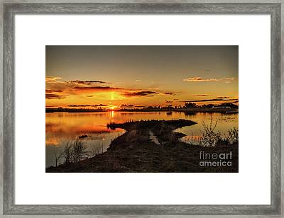 Golden View Framed Print by Robert Bales