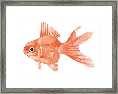 Goldfish Framed Print