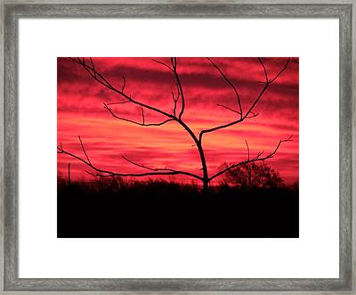 Good Evening Framed Print by Evelyn Patrick