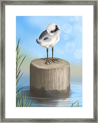 Good Morning Framed Print by Veronica Minozzi