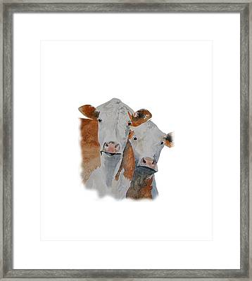 Got Hay? Framed Print