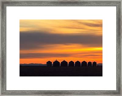 Granary Row Framed Print by Todd Klassy