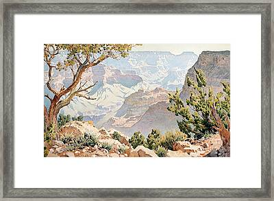 Grand Canyon Framed Print by Gunnar Widforss