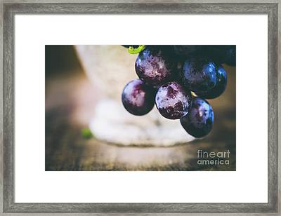 Grapes Framed Print by Jana Behr
