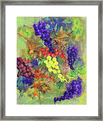 Grapes On The Vine Art 3 Framed Print