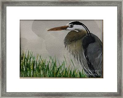 Framed Print featuring the painting Great Blue Heron by Donald Paczynski