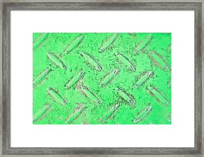 Green Metal Framed Print