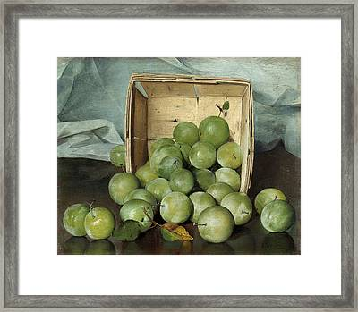 Green Plums Framed Print