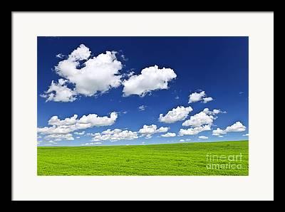 Vibrant Green Photographs Framed Prints