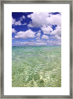Green Water Seascape Framed Print by Vince Cavataio