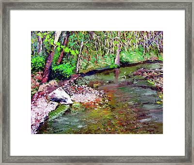 Greesy Creek Framed Print by Stan Hamilton