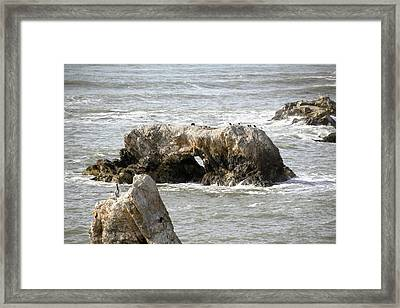 Framed Print featuring the photograph Grey Water At Window Rock by Barbara Snyder