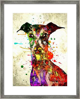 Greyhound Grunge Framed Print