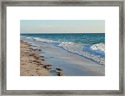 Gulf Of Mexico Beach Framed Print by Steven Scott