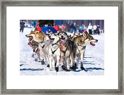 Happy, Happy, Happy Framed Print by Ed Boudreau