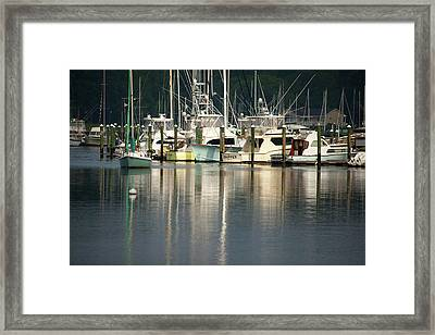 Harbor Reflections Framed Print by Karol Livote