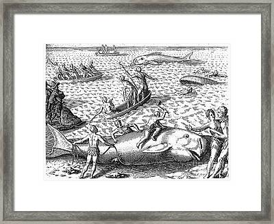 Harpooning Whales, C1590 Framed Print by Granger