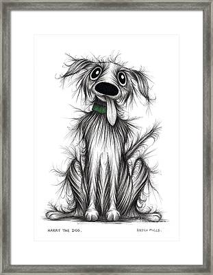 Harry The Dog Framed Print by Keith Mills